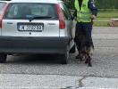 VII Национален преглед с международно участие за водачи на служебни кучета 2012 :: vsk2012_68