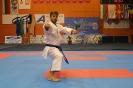 VIII Балканско полицейско първенство по карате, Правец 2014 :: uspb_karate_14_168