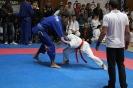 XII Национален фестивал по бойни спортове :: NFBS_2014_245