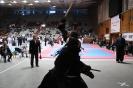 XII Национален фестивал по бойни спортове :: NFBS_2014_257