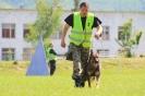 Десети национален преглед за водачи на служебни кучета :: 2015_dog_43