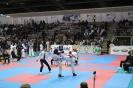 XIII Национален фестивал по бойни спортове :: 13_MPP_70