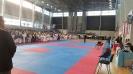 XIV Национален фестивал по бойни спортове :: f16_49