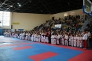 Републикански  фестивал по бойни спортове 2018 г. :: rf18_10