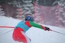 Републиканското първенство по ски алпийски дисциплини и биатлон за служителите на МВР - Банско 2018 г. :: ski_2018_150